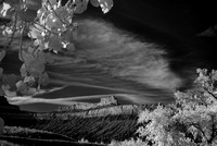 Book Cliffs: Battleship Butte in Infrared